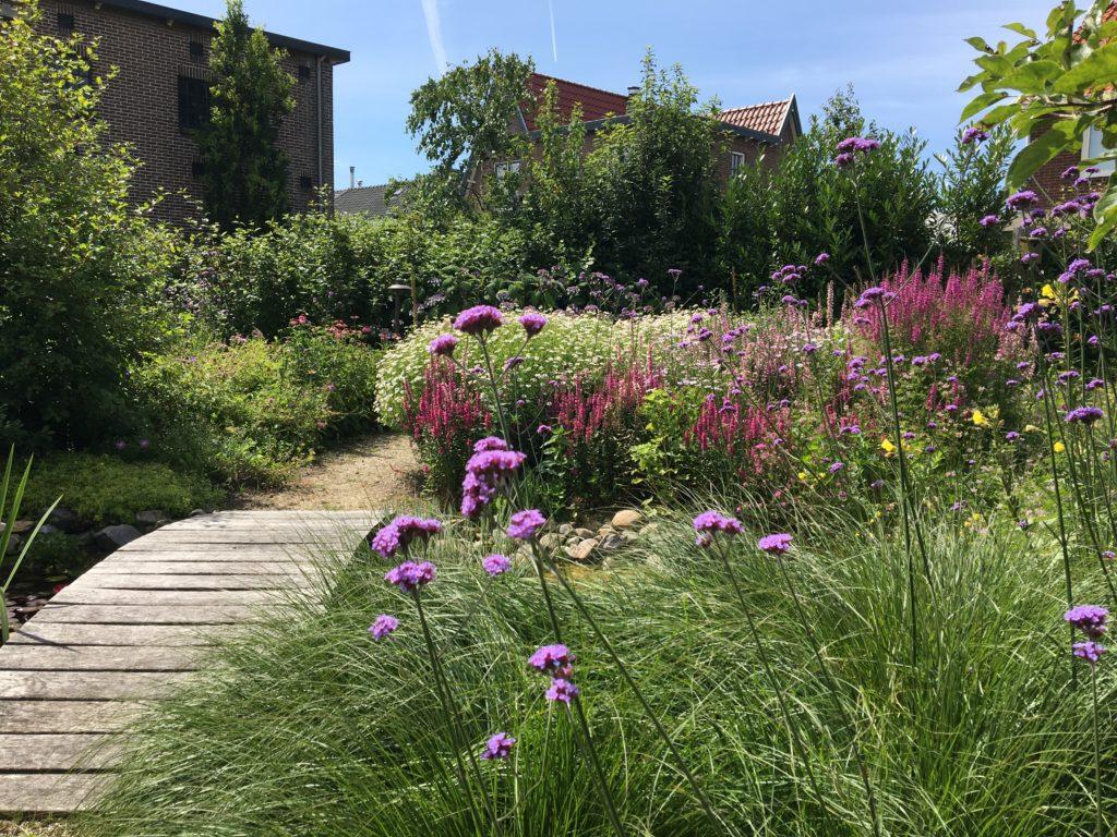 Een diervriendelijke tuin bevat jaarrond bloeiende planten